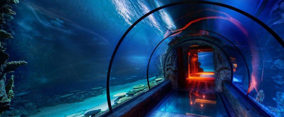 گشایش نخستین تونل آکواریوم کشور در اصفهان